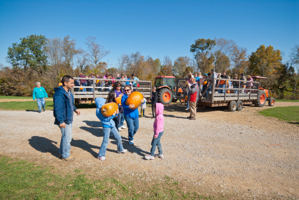 Family holding pumpkins in front of tractor and trailers